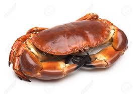 Crab Fishing at Newlyn