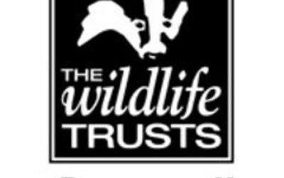 Cornwall Wildlife Trust